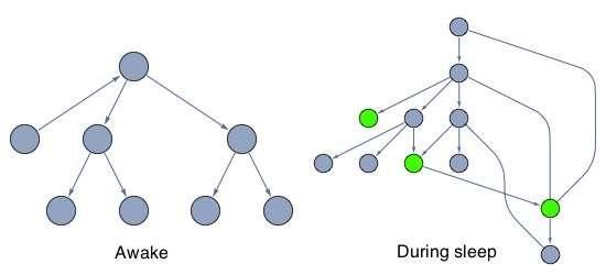 graph-change-during-sleep