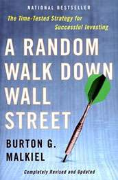 a-random-walk-down-wall-street-review